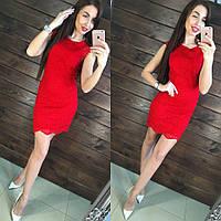 Элегантное, облегающее платье - мини, 100% пилиэстар  (гипюр)  РАЗНЫЕ ЦВЕТА