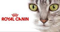 Royal Canin (Франция)