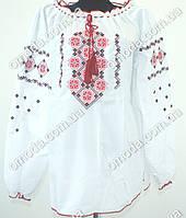 Женская вышиванка  Марьянка PP длинный  рукав