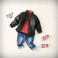 Детская демисезонная куртка на мальчика - Дали