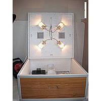 Инкубатор Гусыня с автоматическим переворотом с закладкой до 54 гусиных яиц