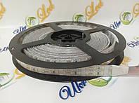 Светодиодная лента SMD4014 240d/m IP68 (CW)
