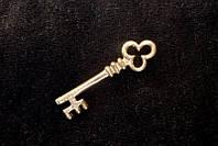Бейдж Ключ