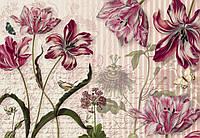 Фотообои бумажные на стену 368х254 см 8 листов: Цветы Мериан. Komar 8-510