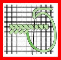 Схема, вышивка нитками, водорастворимый флизелин, сетка Аида №16