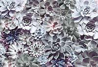 Фотообои бумажные на стену 368х254 см 8 листов: Каменные цветы. Komar 8-962