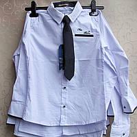 """Рубашка """"Blueland"""" ПОДРОСТОК,Турция. Рубашки детские школьные  для мальчиков, фото 1"""