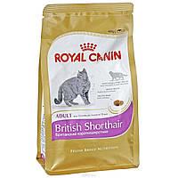 Royal Canin (Роял Канин) Сухой корм для котят британских пород от 4 мес Kitten British Shorthair 2кг