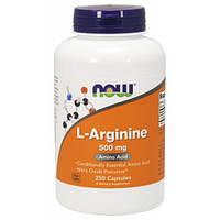 Аргинин Now Foods L-Arginine 500 mg 250 caps