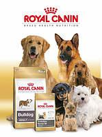 Royal Canin для взрослых собак отдельных пород
