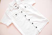 Модная нарядная белая рубашка детская на мальчика 10, 11, 12, 13 лет.Турция!Детская летняя одежда. Футболка
