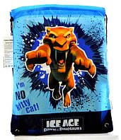 Cool For School Сумка для сменной обуви Ice Age арт. IA09804