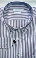 Стильная рубашка в фиолетовую полоску