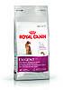 Royal Canin Exigent  Aromatic 2кг+3 пауча -корм для кошек, привередливых к аромату продукта