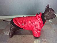 Куртка для собачек Dogs Bomba KR-2 размер 6(M) красная