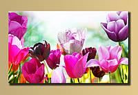 """Картина на холсте """"Тюльпаны"""""""