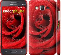 "Чехол на Samsung Galaxy J7 J700H Красная роза ""529u-101"""