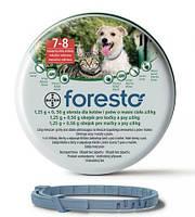 Bayer Foresto (Форесто) - Ошейник от клещей, блох, вшей и власоедов для кошек и собак весом менее 8 кг  38см