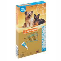 Advocate (Адвокат) средство против паразитов для собак от 4 до 10 кг 1 пипетка