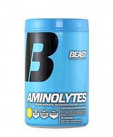 Аминокислотные комплексы BEAST Sports Aminolytes 413 g pineapple