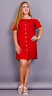 Клариса. Платье рубашка. Красный.(Р)., фото 1