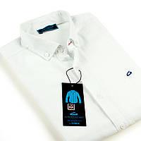 "Рубашка мужская с коротким рукавом ""GAVI GALDO"""