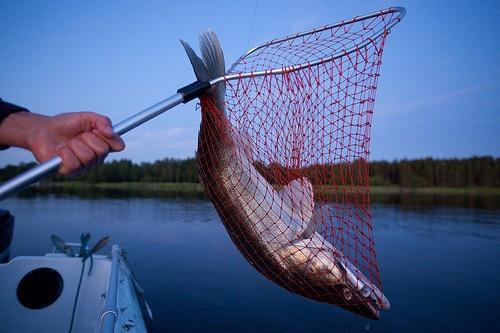 самодельный подсак на рыбалку