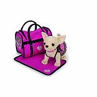 Собачка чихуахуа Розовая мечта  чи чи лав Chi Chi Love оригинальная из Германии Simba