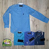 Рубашка для мальчика Polo ярко-синяя