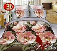 Недорогой комплект постельного белья подарок  BL3169