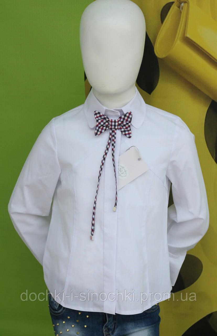 Купить Школьную Блузку В Интернет Магазине Недорого