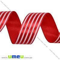 Атласная лента в полоску, 25 мм, Красная, 1 м (LEN-016701)