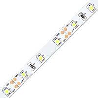Лента светодиодная FERON LS603/LED-RL 60SMD(3528)/m 4.8W/m 12V 5m*8*0.22mm красный на белом  (блистер)