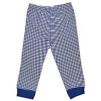 Спортивные штаны (Синий, полоски)
