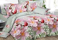 Полуторный набор постельного белья Ранфорс №185