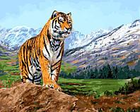 """GX 8305 """"Тигр на фоне заснеженных гор""""  Роспись по номерам на холсте 40х50см без коробки, в пакете"""