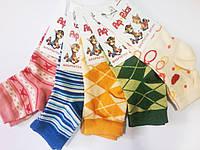 Демисезонные детские носки Африка (Рубежное)