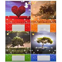 Тетрадь цветная 48 листов, клетка