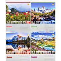 Тетрадь цветная 48 листов, линия