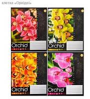 Тетрадь 96_листов клетка /Орхидеи