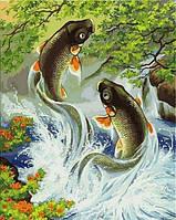 Картины по номерам 40×50 см. Японские карпы
