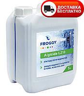 Средство против водорослей, Альгицид, FROGGY Algyrid L210 5 л.