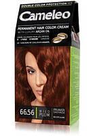 Краска для волос CAMELEO с маслом Арганы № 66.56 Дикая слива