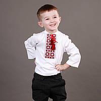 Практичная трикотажная вышиванка для мальчика на длинный рукав
