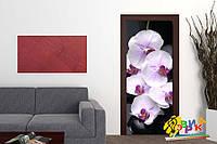 Наклейки на дверь Орхидея