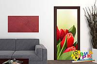 Виниловые наклейки на дверь Тюльпаны