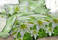 Двуспальный набор постельного белья Ранфорс №193