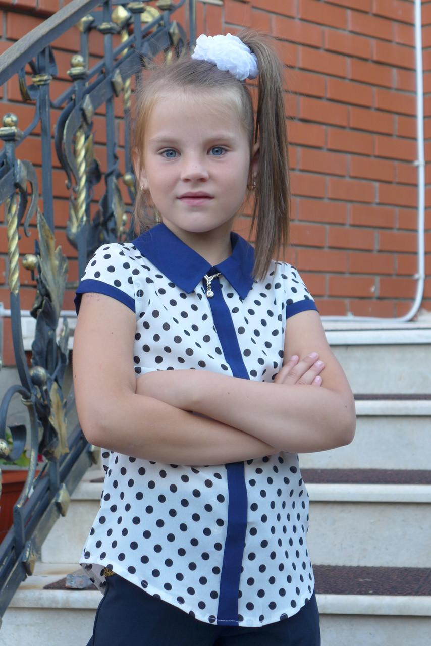 Купить Белую Блузку Для Девочки В Школу