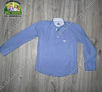 Стильная хлопковая рубашка ARMANI для мальчика голубая