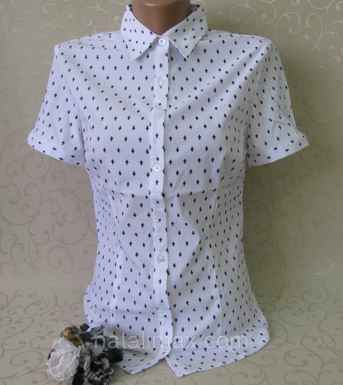 Школьные Блузки Купить В Одессе